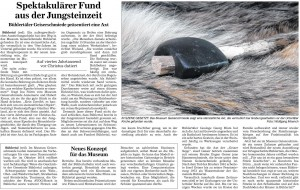 Badische Neueste Nachrichten vom 10.12.2015